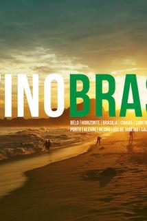 Destino Brasil 2014