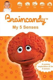 Braincandy: My Five Senses