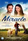 Marshall the Miracle Dog (2015)