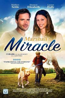 Marshall the Miracle Dog  - Marshall the Miracle Dog