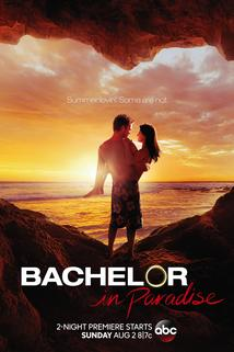 Bachelor in Paradise  - Bachelor in Paradise