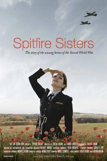 Dámy na Spitfirech  - Spitfire Sisters