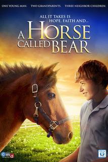 A Horse Called Bear  - A Horse Called Bear