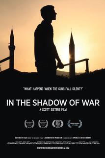 Ve stínu války