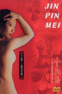 Xin jinpíngméi dì yi juàn