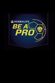 Be a Pro