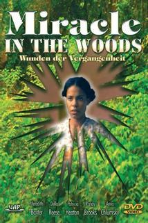 Zázračný háj  - Miracle in the Woods