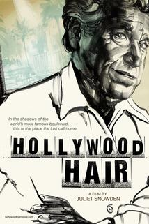 Hollywood Hair  - Hollywood Hair