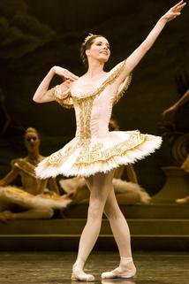 Darcey's Ballerina Heroines