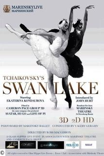 Swan Lake 3D - Live from the Mariinsky Theatre