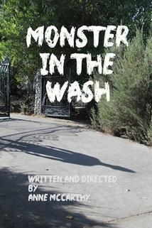 Monster in the Wash
