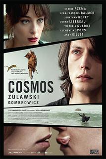 Kosmos  - Cosmos