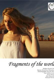 Fragments of the World