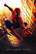 Plakát k filmu: Spider-Man