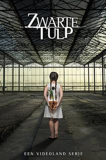 Zwarte Tulp  - Zwarte Tulp