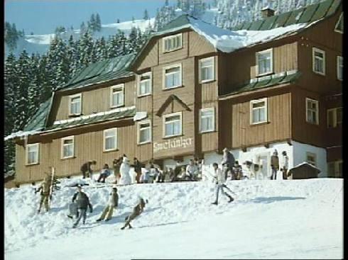 Sněženky a machři