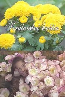 Království květin
