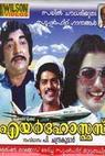 Air Hostess (1980)