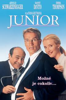 Plakát k filmu: Junior