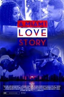 A Miami Love Story ()