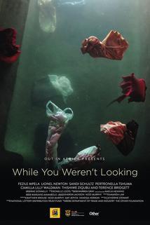 While You Weren't Looking  - While You Weren't Looking