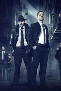 Gotham  - Gotham