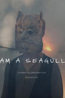 Untitled Seagull Project