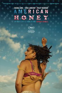 Plakát k filmu: American Honey