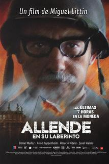 Allende en su laberinto  - Allende en su laberinto