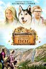 Timber the Treasure Dog (2015)