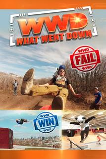 What Went Down - A Fail in a Haystack  - A Fail in a Haystack