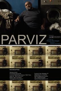 Parvíz