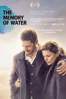 La memoria del agua  - La Memoria del Agua