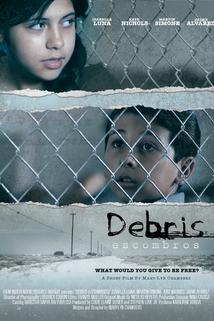 Debris Escombros