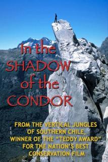 In the Shadow of the Condor