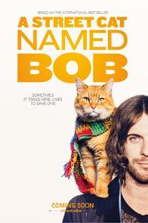 Plakát k filmu: Kocour Bob