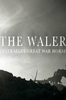 The Waler: Australia's Great War Horse