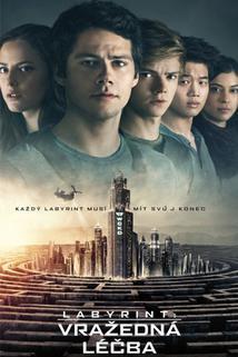 Plakát k filmu: Labyrint: Vražedná léčba 3D