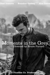 Moments In the Grey