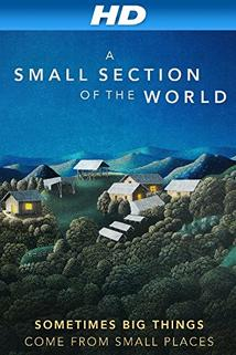 A Small Section of the World