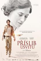 Plakát k filmu: Příslib úsvitu