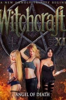 Witchcraft 14: Angel of Death ()