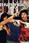 Qin long san shi qi ji