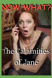 The Calamities of Jane  - The Calamities of Jane