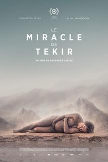 Zázrak v Tekiru