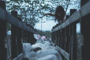 Neonový býk