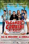 Vacanze ai Caraibi (2015)
