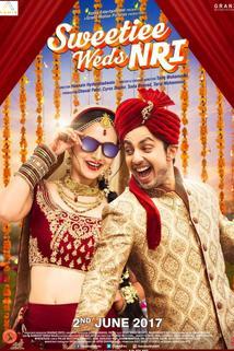 Sweetie Desai weds NRI  - Sweetie Desai weds NRI