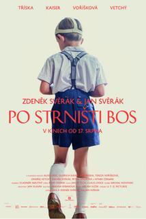 Plakát k filmu: Po strništi bos