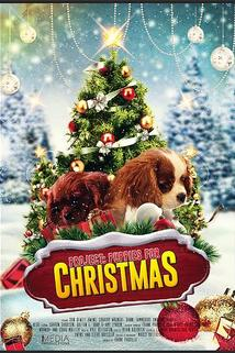 Project: Puppies for Christmas  - Project: Puppies for Christmas